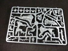 WARRIORS of Chaos Dragon Ogre su telaio in plastica