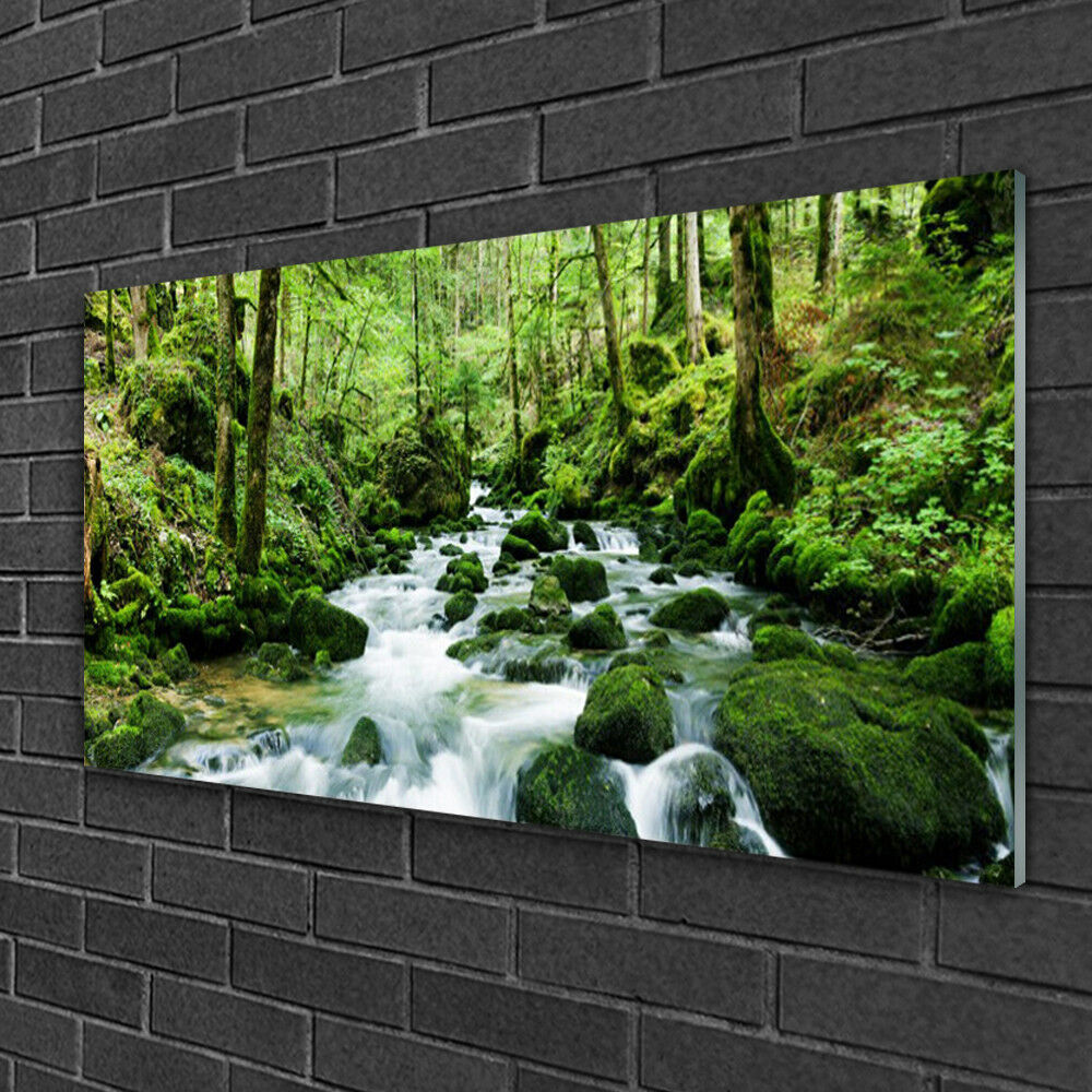 Glass print Wall art 100x50 Image Picture Forest Lake Stones Nature