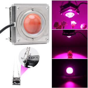 144LED-COB-LED-Pflanzenlampe-Vollspektrum-Hydroponic-Veg-Flower-Wachsen-Licht