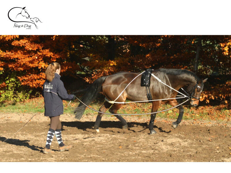 Busse Lunging Aid  Plus Roller Training Stret ng Breaking Pony  Full FREE P&P  low 40% price