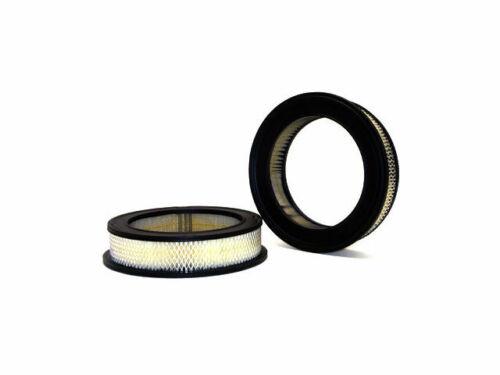 For 1958-1961 Ford Fairlane Air Filter WIX 27442BJ 1959 1960 Air Filter