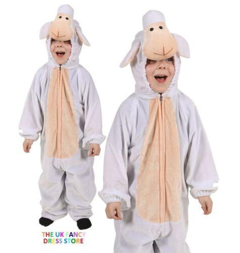 Enfant sainte nativité noël jeu costume robe fantaisie mary joseph sages star