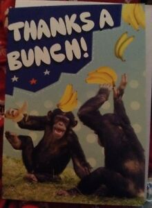 THANK-YOU-CARD-WITH-ENVELOPE-039-THANKS-A-BUNCH-039
