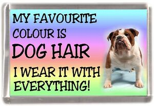Bulldog-Fridge-Magnet-034-My-Favourite-Colour-is-Dog-Hair-034-by-Starprint