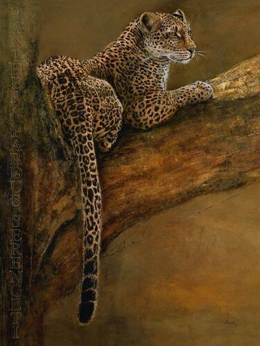 Danielle Beck  Panthera du Serengeti Fertig-Bild 60x80