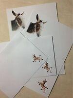 Cute Lovable Donkey letter writing paper & envelopes stationery set