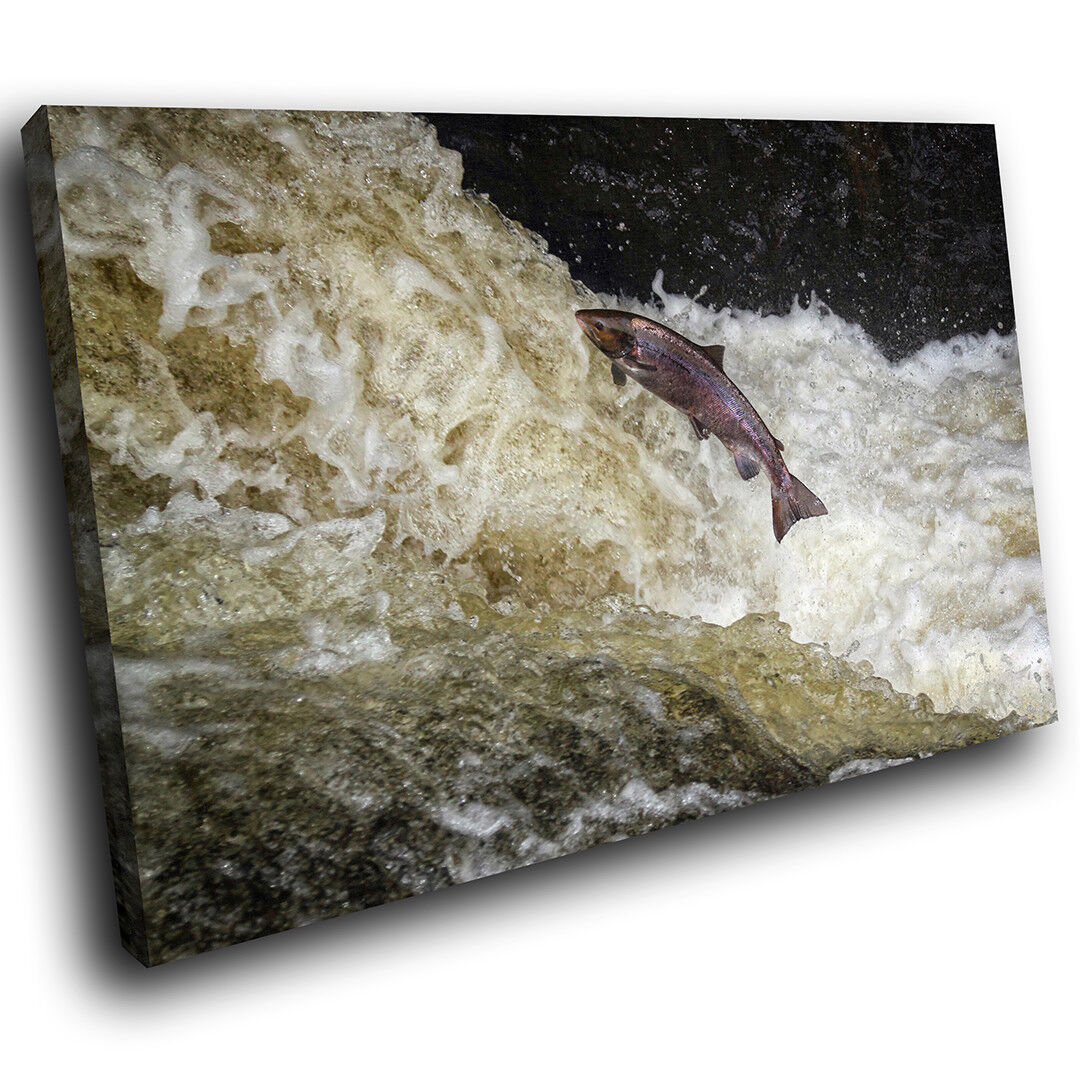 A550 Salmon Fish River Grün Funky Animal Canvas Wall Art Large Picture Prints