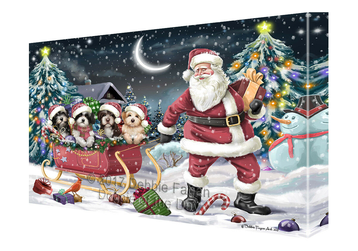 Merry Christmas Santa Sled Havanese Dogs Canvas Wall Art T298