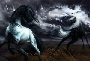 Home-Art-Wall-Decor-Two-black-horses-stormy-sky-Oil-Painting-Printed-On-Canvas