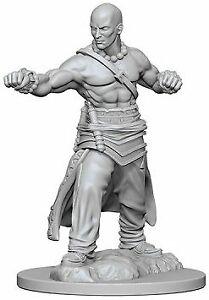 Human Male Monk Wizkids Pathfinder 72612