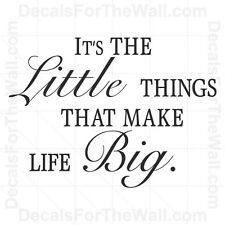 ItÕs the Little Things that Make Life Big Inspirational Wall Decal Vinyl IN82