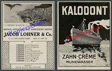orig. Reklame K.u.K. Luftwaffe Aëroplan- Fabrik Jacob Lohner Wien Luftbild 1917