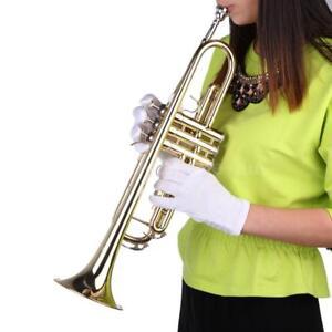 B-Bb-Beginner-Trumpet-Flat-Brass-Mouthpiece-Gloves-Gig-Bag-Gold-G2R1