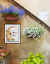 Welcome-Home-Calico-Kitty-Cat-Red-Flowers-Home-Folk-Art-Wall-Art-Print miniature 3