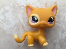 Littlest Pet Shop RARE Standing Cat #855 Orange Purple Moon Eyes Short Hair LPS