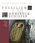 Fossilien im Hunsrück Schiefer von Derek Briggs, Jes Rust, Christoph Bartels und Gabriele Kühl (2011, Gebundene Ausgabe)