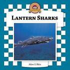 Lantern Sharks by Adam G Klein (Hardback, 2006)