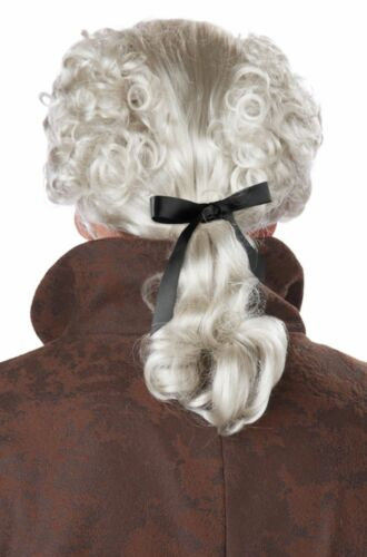 Gray 18th Century Peruke Wig Colonial Man Victorian Christmas Caroler Fezziwig