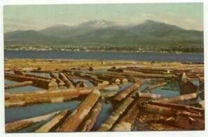 Northwest-Logging-Floating-Timber-c1940s-Postcard