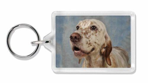 English Setter Dog Photo Keyring Animal Gift, AD-ES3K