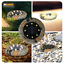 8-LED-Solar-Power-Flat-Buried-Light-In-Ground-Lamp-Outdoor-Path-Garden-Decor-UK thumbnail 7
