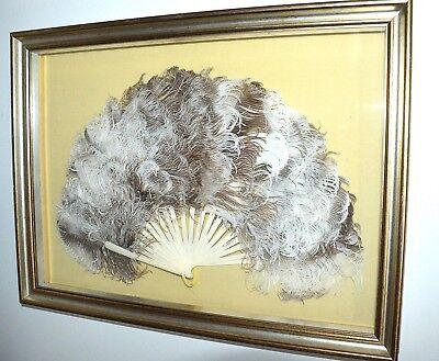 Sensible Quadro Antico Ventaglio Osso Piume Di Struzzo '900 Old Hand Fan Eventail Cloth Altri Complementi D'arredo Arredamento D'antiquariato