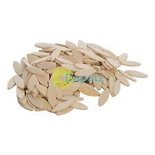 200 BISCOTTI N. 20 in legno Jointers di connessione per biscotto TASSELLI