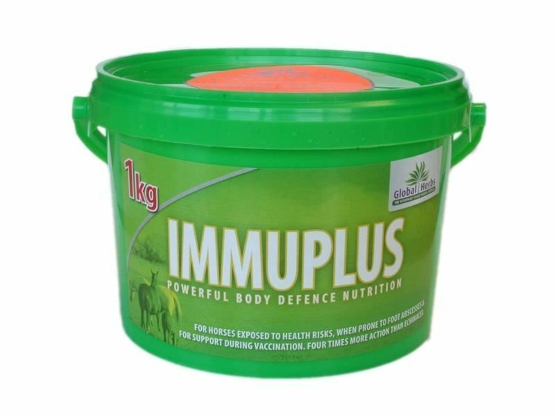Global Herbs ImmuPlus Powder - Supplement for Horses and Ponies - BN