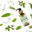 Hair-Growth-Oil-100-Natural-Organic-Herb-Treatment-For-All-Hair-Types-100-amp-200ml thumbnail 26