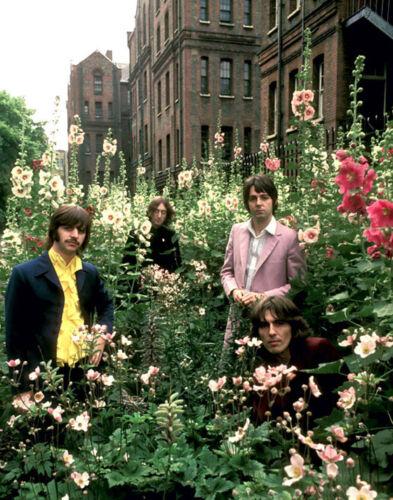 "The Beatles 14 x 11/"" Photo Print"
