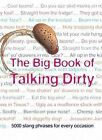 The Big Book of Talking Dirty: 5000 Slang Phrases by Jonathon Green (Hardback, 2006)