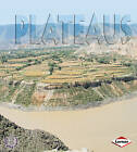 Plateaus by Sheila Anderson (Paperback, 2010)