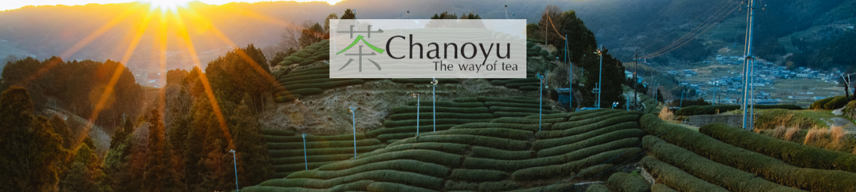 chanoyutea