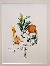 Salvador Dali - Pomelo erotico. Edicion limitada 800 ejem