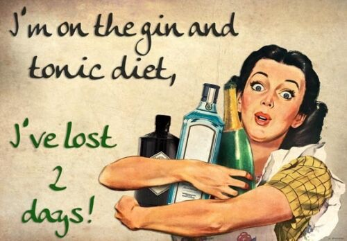 FV30 Vintage Style Gin Tonic Diet Lost 2 Days Booze Funny Poster Print A2//A3//A4
