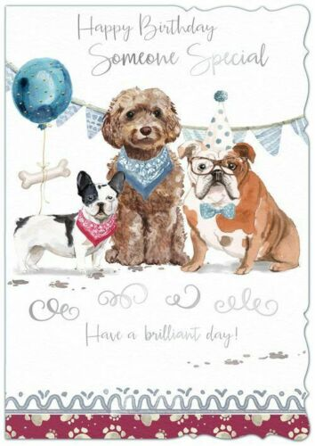 Someone Special Large Birthday Card Quality Male Out of the Blue Dogs