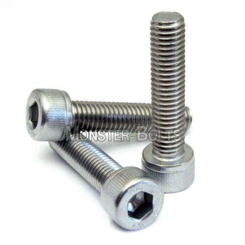 "1//4-20 x 7//8/""  Stainless Steel Socket Head Cap Screws SAE Coarse Allen Hex 18-8"