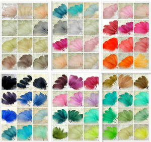 70-COLORI-Loose-piume-d-039-oca-per-cappelli-modisteria-Trim-Fascinators-Abito-Crafts