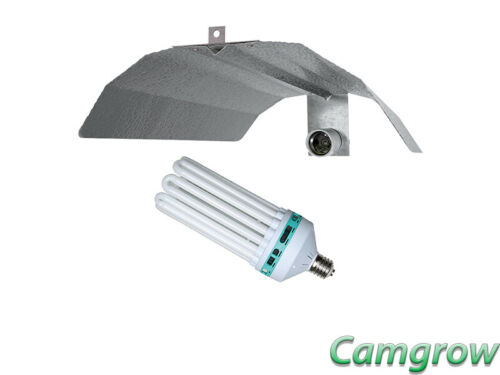 Kit CFL Complete CFL Lighting Kit Reflector /& 125w Cool Lamp