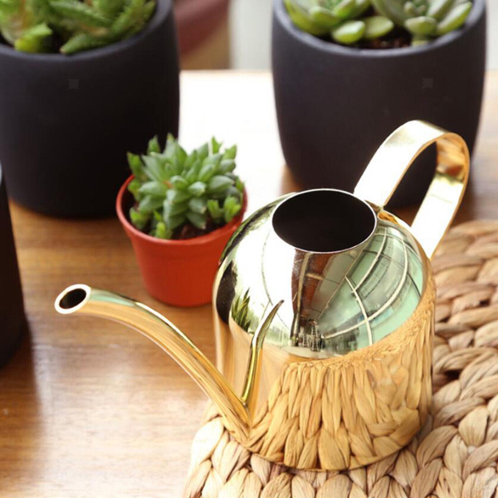 1000ml Watering Can Gardening Long Spout Flower Succulents Watering Pot