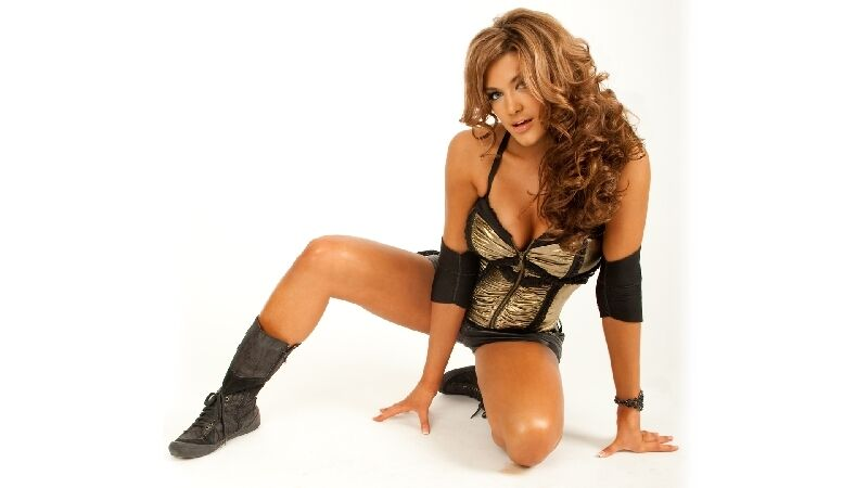 Wwe Diva Eve Torres Poster Sexy Hot 1  Ebay-2085