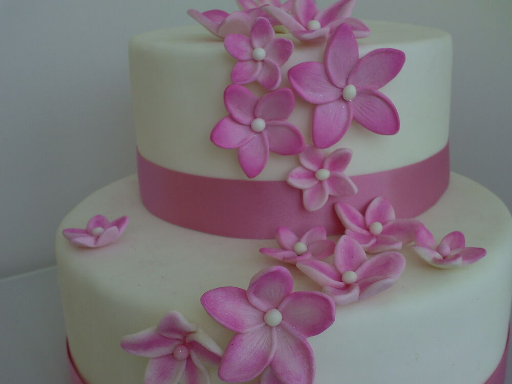 sugarpaste wedding cake decorations edible icing frangipani flowers 15 wedding birthday 20583
