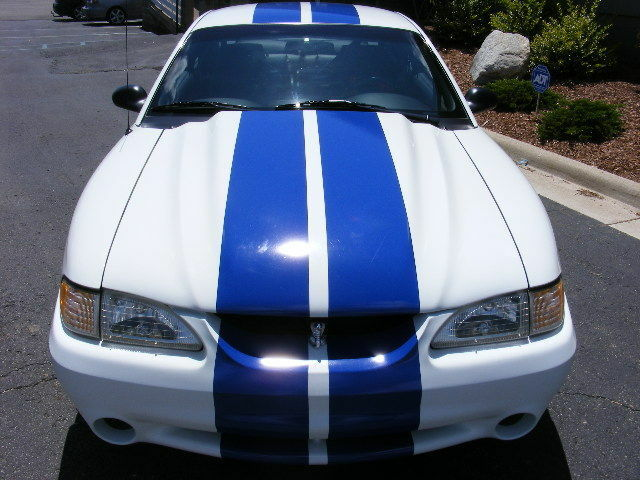 1995 To 1998 Mustang 10 Quot Plain Rally Stripes Stripe