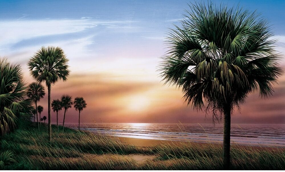 New XL PALM TREES WALLPAPER MURAL Sunset Scene Wall Murals Tropical Beach Decor