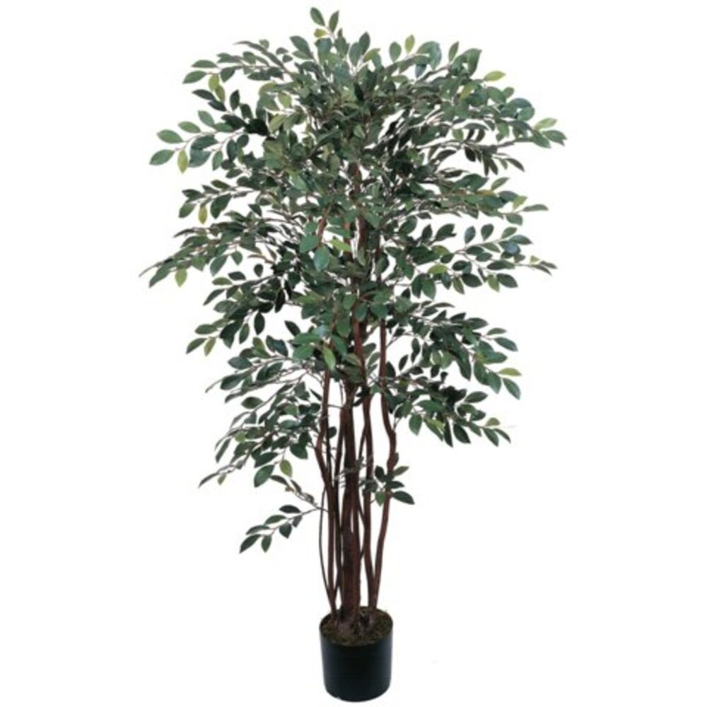 Artificial Trees Plants: Decorative Natural Looking Artificial Potted 4' Ruscus