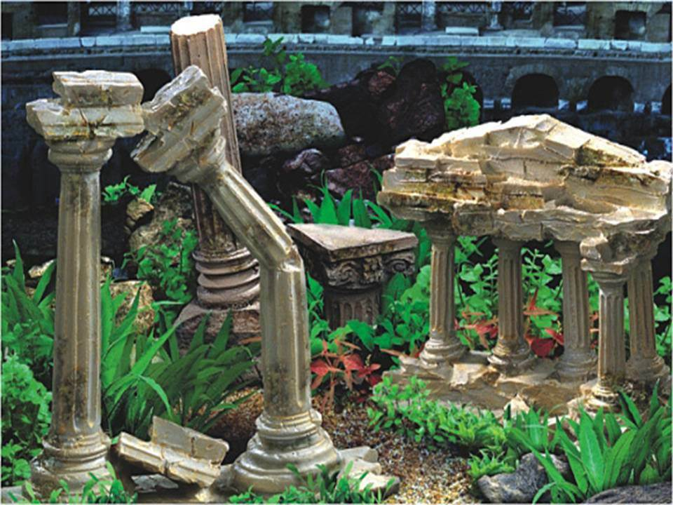 Aquarium Vivarium Roman Temple Ruins Background 15 Tall