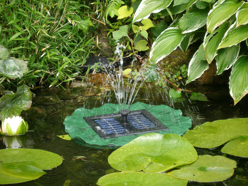 solar springbrunnen teichpumpe wasserlilie schwimmend. Black Bedroom Furniture Sets. Home Design Ideas