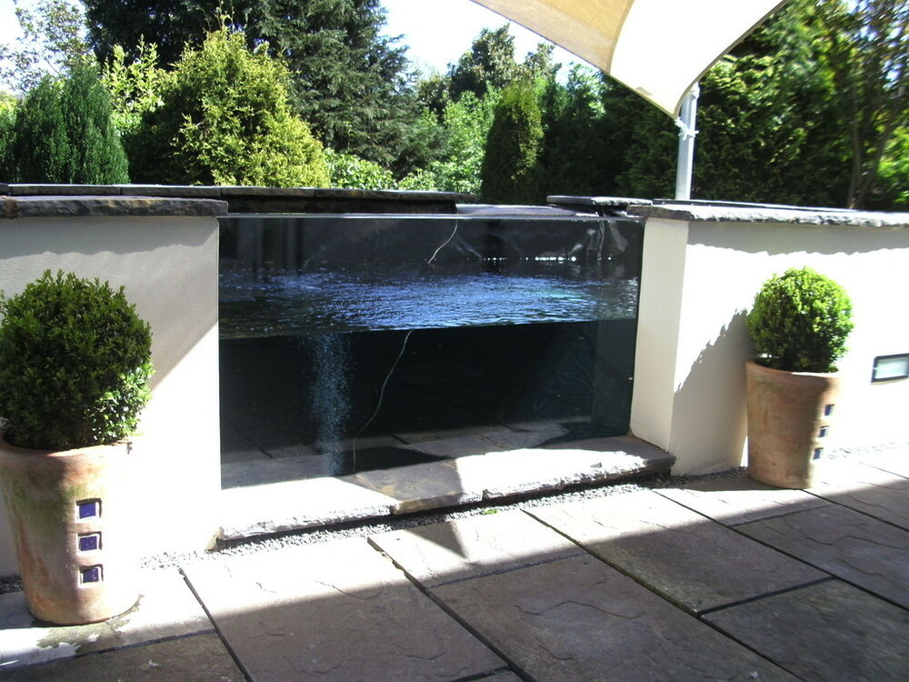 Glass for koi pond window viewing panel 1800 x 450mm for Koi pond window