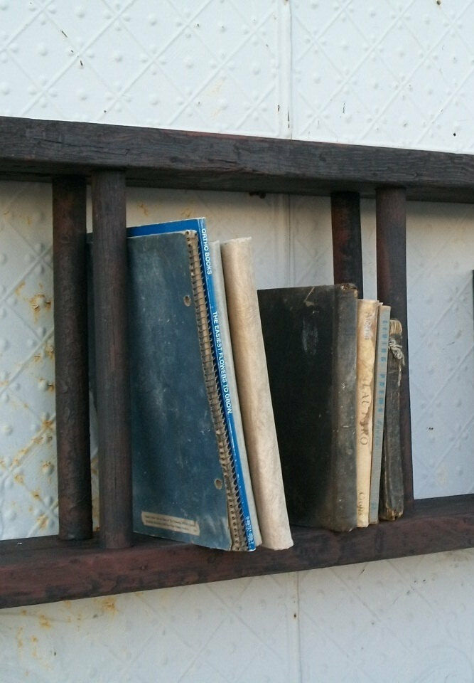 Antique Wood Double Ladder Mounted For Book Shelves Or