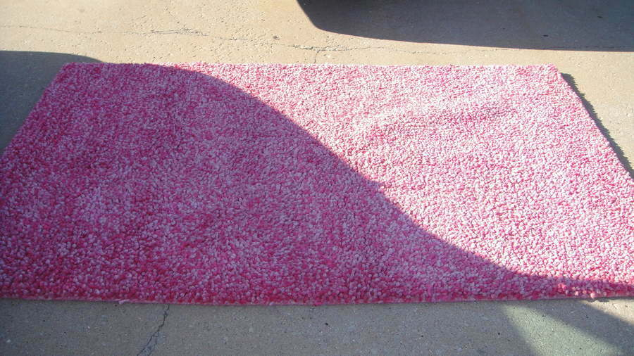 Rare Pottery Barn Teen Pink Thick Girls Rug 5x8 Ebay